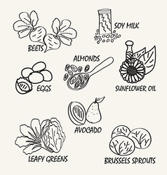 Food elements2 vector