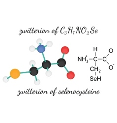 C3H7NO2Se zwitterion of selenocysteine amino acid vector image vector image