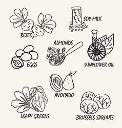 Food elements2 vector
