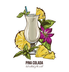Pina colada cocktail mint leaves and orchid vector
