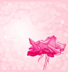 rose flower sketch vector image vector image