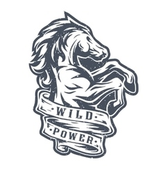 Wild horse and ribbon for text vector