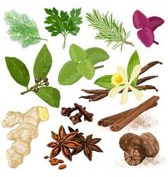 spices menu icon set vector image
