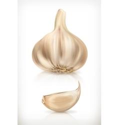 Garlic icons vector