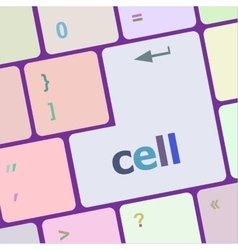 Cell word on keyboard key notebook computer vector