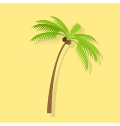 Palm tree with coconut vector