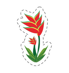 Cartoon heliconia flower image vector