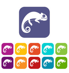 Chameleon icons set vector