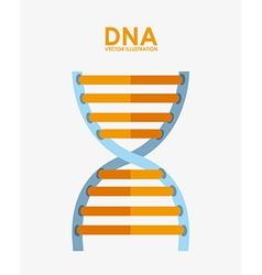 dna design vector image