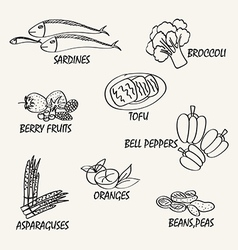 Food elements3 vector