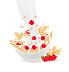 milk flowing into a bowl with grain and raspberry vector image vector image
