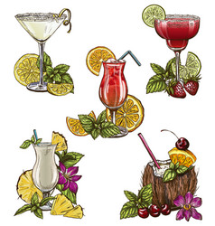 Set of five summer cocktails vector