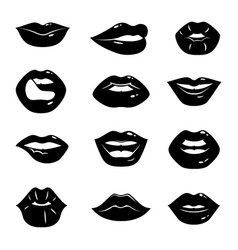 monochrome of beautiful and glossy vector image