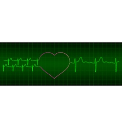 Ecg from two hearts after love to one heart vector