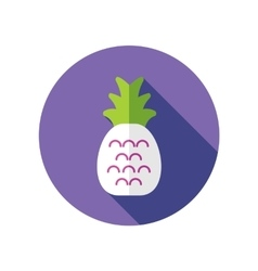 Pineapple flat icon with long shadow vector