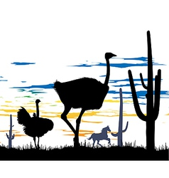 Ostriches in steppe vector