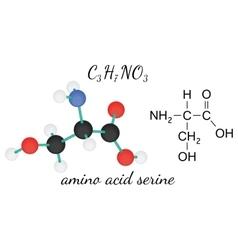 C3h7no3 serine amino acid molecule vector