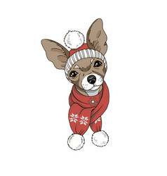 dog in hat and scarf vector image vector image