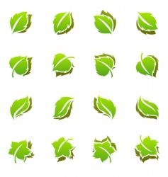 leaves template set vector image vector image