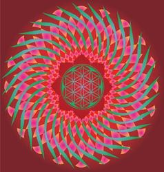 Color ornamental floral mandala vector image