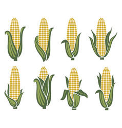corn images set vector image vector image