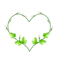 Flower and leaves vine in beautiful heart shape vector