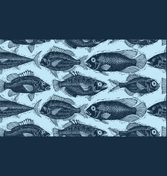 Seamless pattern with fishes different species vector