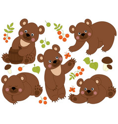 set of cute forest brown bears vector image vector image