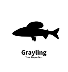 silhouette of grayling vector image vector image