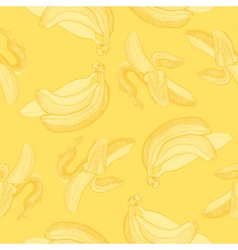 Bananas engraving drawing vector