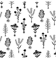 Herbarium flowers with roots seamless pattern vector
