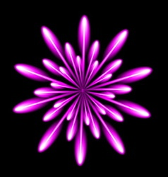 Firework salute burst in black night background vector