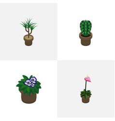 Isometric plant set of grower houseplant vector