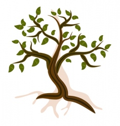 mountain tree vector image