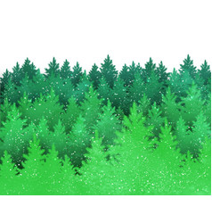 background with green spruce forest silhouette vector image vector image