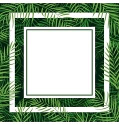 frame tropical palm leaf vector image