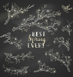 Set of chalk spring branches on blackboard vector