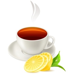 cup of tea on white background vector image vector image