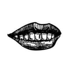 smile lips isolated on white background vector image vector image