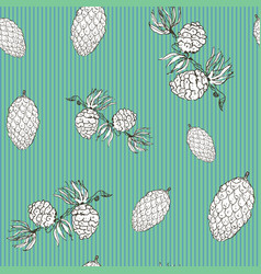 pine cones hand drawn sketch retro vintage vector image
