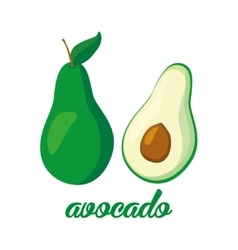 Avocado fruits poster in cartoon style depicting vector