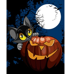 Cartoon black cat with pumpkin at night vector