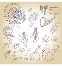 Thanksgiving day and autumn harvest vector