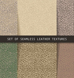 Set of seamless leather textures vector