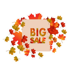 Sales banner with autumn leaves isolated on white vector