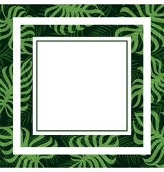Frame tropical palm leaf and monstera vector