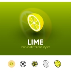 Lime icon in different style vector