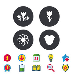 Flowers icons bouquet of roses symbol vector