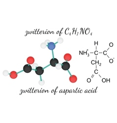 C4H7NO4 zwitterion of aspartic acid amino acid vector image vector image