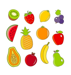 Organic fresh fruits and berries outline icons vector